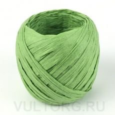 Пряжа Рафия бумажная, цвет № G19 (Зеленая трава)