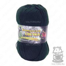 Пряжа Каракульская овечка Color City, цвет № 2427 (Темно-зеленый)