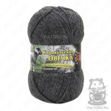 Пряжа Каракульская овечка Color City, цвет № 2901 (Темно-серый)