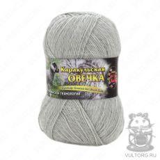 Пряжа Color City Каракульская овечка, цвет № 29601 (Светло-серый)