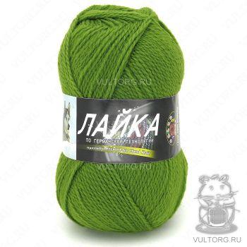 Пряжа Лайка Color City, цвет № 2406 (Зелёный)