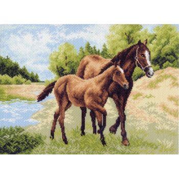 Лошади (37х49)