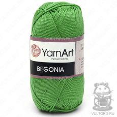 Пряжа Begonia YarnArt, цвет № 6332 (Зелёное яблоко)